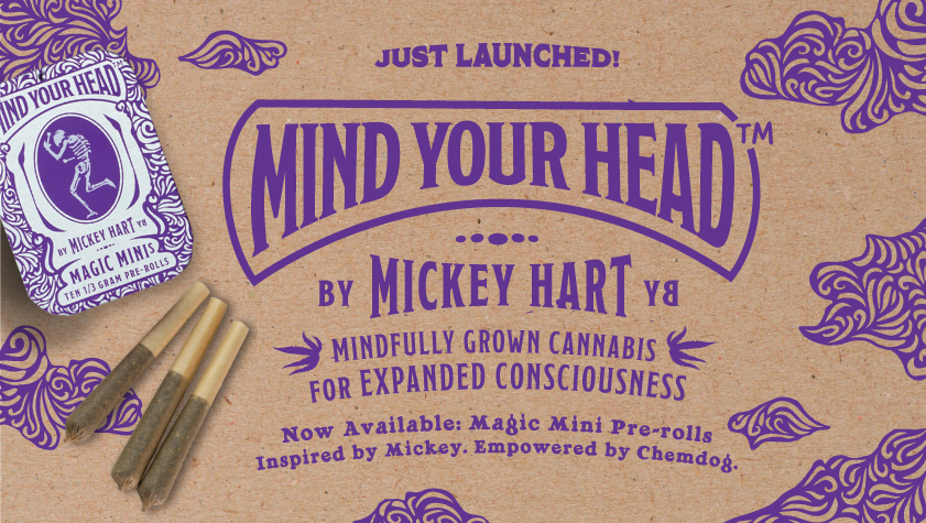 Mind Your Head By Mickey Hart