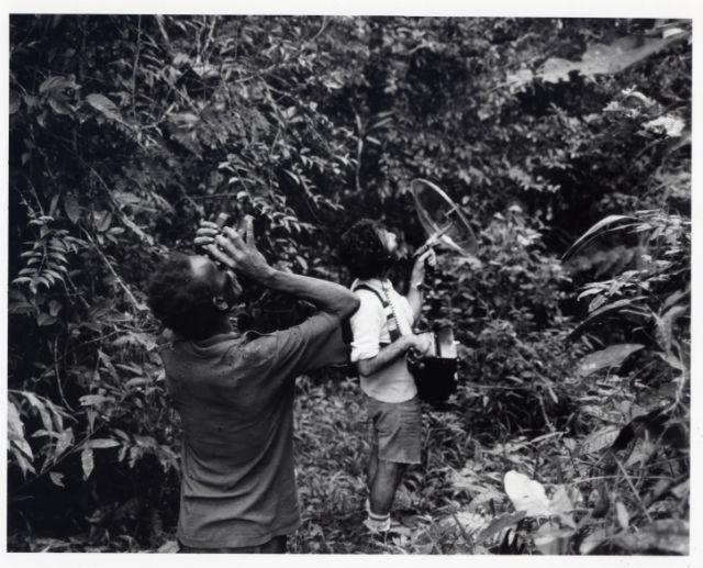 Remembering Voices of the Rainforest: Earth Day 1991