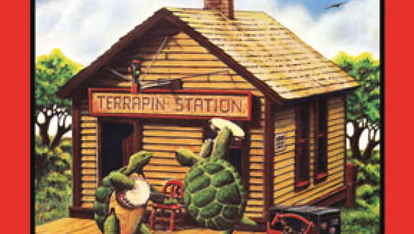 Terrapin Tuesdays - This Week's Pick -
